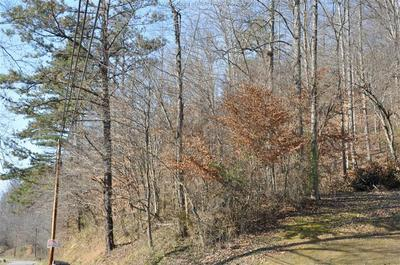 0 LOW GAP ROAD, Danville, WV 25053 - Photo 1