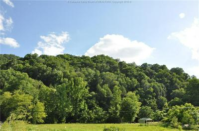 0 OLD RIVER ROAD, Madison, WV 25130 - Photo 1