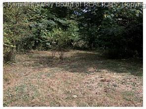 1675 IVYDALE RIDGE RD, Ivydale, WV 25113 - Photo 2