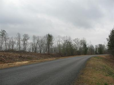 0 COUNTY ROAD 229 ROAD, Thorsby, AL 35171 - Photo 2