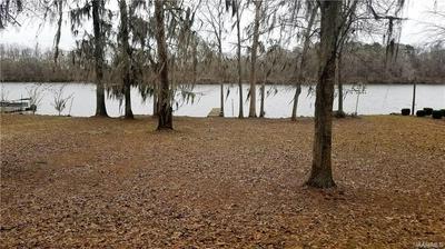 0 RED EAGLE DRIVE, Lowndesboro, AL 36752 - Photo 1
