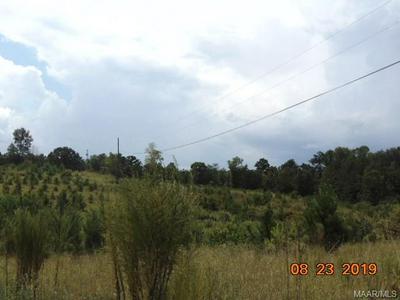 0 COUNTY ROAD 312, Maplesville, AL 36750 - Photo 2
