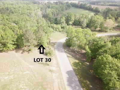 LOT 30 RIDGE ROAD, Headland, AL 36345 - Photo 1