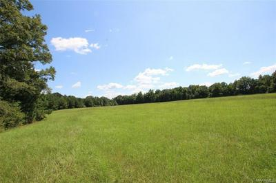 40 N COLLEGE AVE, Eclectic, AL 36024 - Photo 2