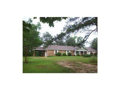 1750 COUNTY ROAD 125, Plantersville, AL 36758 - Photo 1
