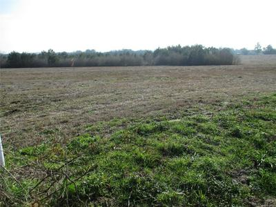 LOT 2 COUNTY ROAD 20, Ozark, AL 36360 - Photo 2