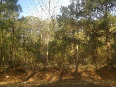 0 ROCKY BRANCH ROAD, CENTREVILLE, AL 35042 - Photo 2