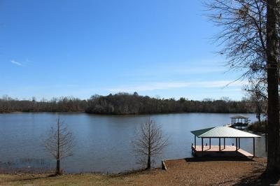 4, Gee's Bend, AL 36720 - Photo 1