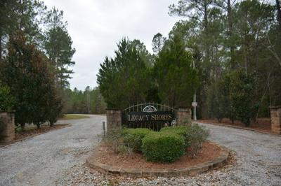 TBD LEGACY SHORES, Camden, AL 36720 - Photo 1