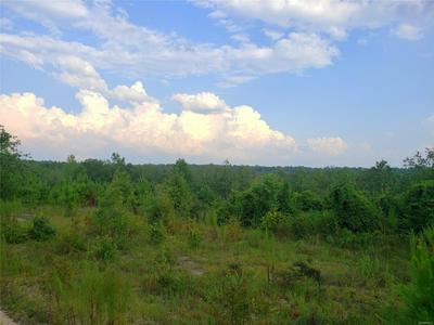14 AC SUGAR ROAD, Tuskegee, AL 36083 - Photo 2