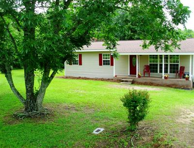2213 COUNTY ROAD 72, Chancellor, AL 36316 - Photo 1