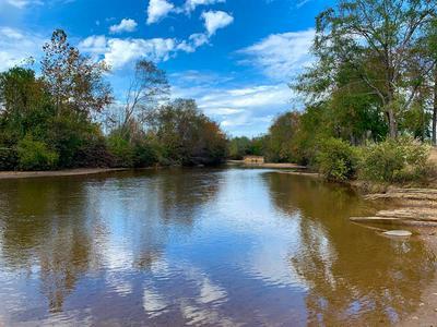 1565 COUNTY ROAD 103, Plantersville, AL 36758 - Photo 1