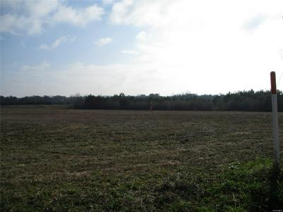 LOT 2 COUNTY ROAD 20, Ozark, AL 36360 - Photo 1