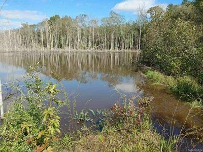 0 COUNTY ROAD 64, Maplesville, AL 36750 - Photo 1