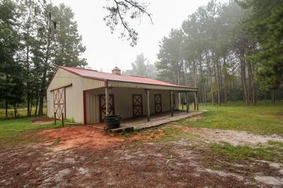 170 COUNTY ROAD 47, Tuskegee, AL 36083 - Photo 2