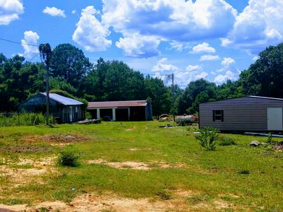 24631 AND 24687 HIGHWAY 87, Elba, AL 36323 - Photo 2