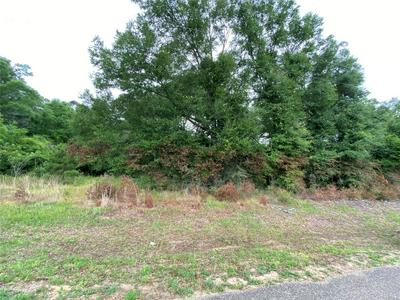 1.63 ACRES W V ARMSTRONG ROAD, Black, AL 36344 - Photo 2
