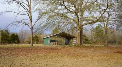 96 BLACKBERRY LN, Deatsville, AL 36022 - Photo 2