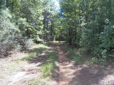 000 HIGHWAY 125, Elba, AL 36323 - Photo 2