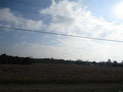 LOT 3 COUNTY ROAD 20, Ozark, AL 36360 - Photo 2