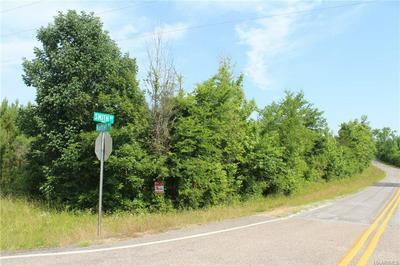 0 NAFTEL ROAD, Ramer, AL 36069 - Photo 1