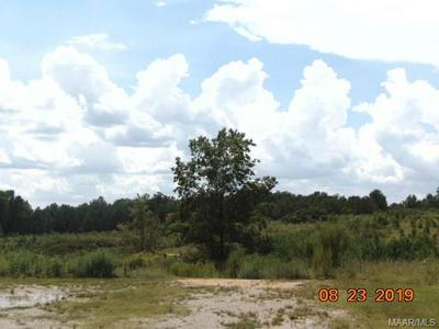 0 COUNTY ROAD 312, Maplesville, AL 36750 - Photo 1
