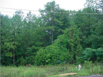 28 BLUEBIRD COURT, Deatsville, AL 36022 - Photo 1