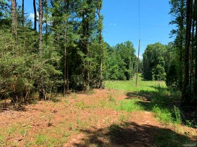 55 ACRES TOM FAIN ROAD, Geneva, AL 36340 - Photo 1