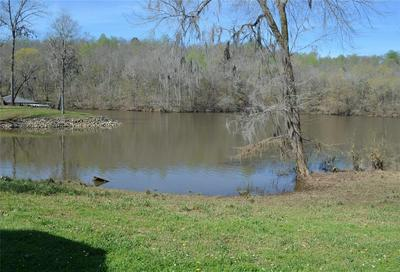 46 NEWPORT LNDG, Lowndesboro, AL 36752 - Photo 2