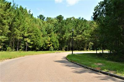 TBD HORSESHOE BEND DRIVE, Ozark, AL 36360 - Photo 1