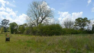 LOT 1 HIGHWAY 27 HIGHWAY, Chancellor, AL 36316 - Photo 1