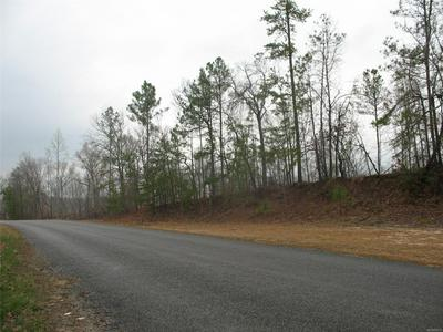 0 COUNTY ROAD 277 ROAD, Thorsby, AL 35171 - Photo 2