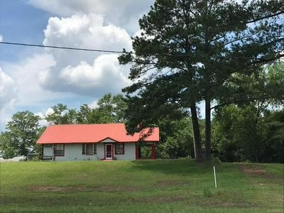 12045 HIGHWAY 125, Elba, AL 36323 - Photo 1