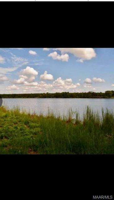 325 NEWPORT CV, Lowndesboro, AL 36752 - Photo 1