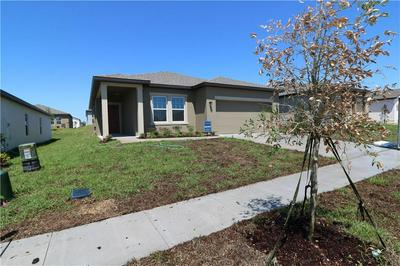 1150 LYCASTE DR, Davenport, FL 33837 - Photo 2