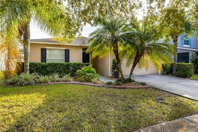 30836 TEMPLE STAND AVE, WESLEY CHAPEL, FL 33543 - Photo 1
