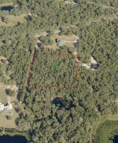 OWLS NEST COURT, De Leon Springs, FL 32130 - Photo 1