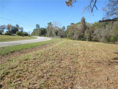 160 TERRACE, Ocklawaha, FL 32179 - Photo 2