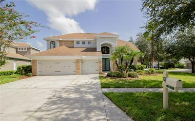 10117 DEERCLIFF DR, TAMPA, FL 33647 - Photo 1