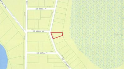 0 NE 114TH AVENUE, Fort Mc Coy, FL 32134 - Photo 2