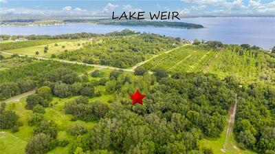 12350 SE SUNSET HARBOR RD, WEIRSDALE, FL 32195 - Photo 1