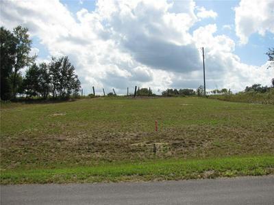 MALAUKA LOOP, Ocklawaha, FL 32179 - Photo 2