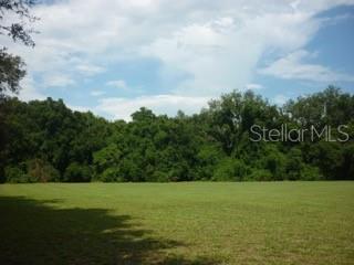 11315 N 301ST HIGHWAY, Thonotosassa, FL 33592 - Photo 1