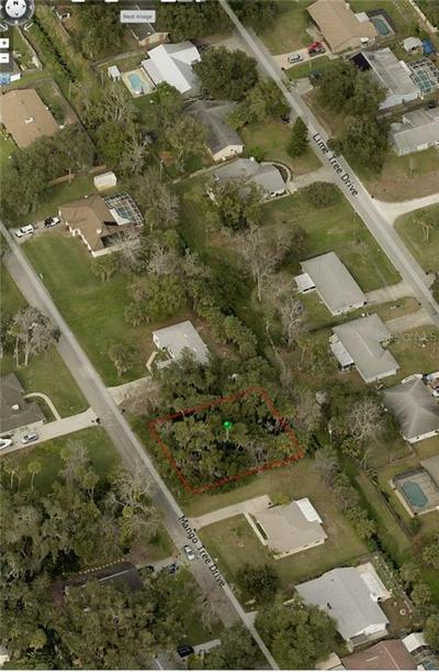 MANGO TREE DRIVE, Edgewater, FL 32141 - Photo 1