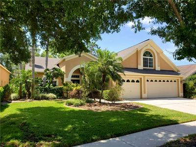 10209 THICKET POINT WAY, TAMPA, FL 33647 - Photo 1