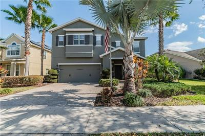19249 EARLY VIOLET DR, TAMPA, FL 33647 - Photo 1