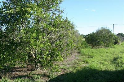 0 SE COUNTY ROAD 25, Weirsdale, FL 32195 - Photo 2