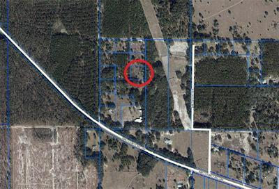 13210 SW COUNTY ROAD 346, ARCHER, FL 32618 - Photo 2
