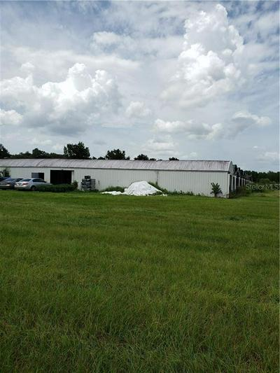 23035 STATE ROAD 46, SORRENTO, FL 32776 - Photo 2