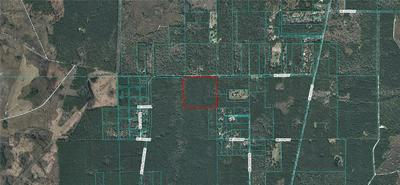 NE 100TH ST NE 100TH ST, Fort Mc Coy, FL 32134 - Photo 1